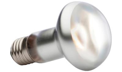 EXO TERRA Spezialleuchtmittel »EX Tight Beam Tageslichtlampe«, für Terrarien, 50 Watt, E27 kaufen