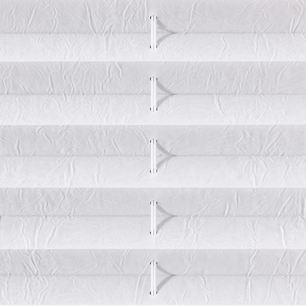 Liedeco Plissee »Klemmfix«, Lichtschutz, ohne Bohren, verspannt