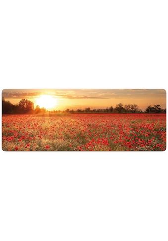 Wall-Art Glasbild »Mohnfeld im Sonnenuntergang Panorama«, 100/40 cm kaufen