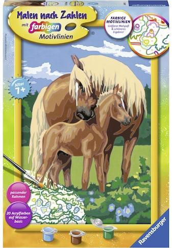 Ravensburger Malen nach Zahlen »Liebevolle Pferde«, Made in Europe, FSC® - schützt... kaufen