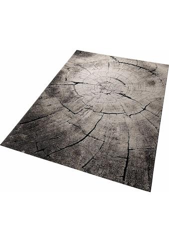 Teppich, »Wild Oak«, Wecon home, rechteckig, Höhe 13 mm, maschinell gewebt kaufen