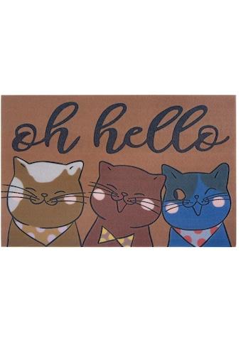 my home Fußmatte »Katzen«, rechteckig, 6 mm Höhe, Schmutzfangmatte mit Spruch, In- und... kaufen