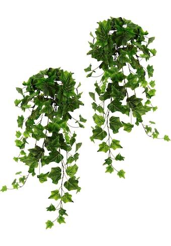 I.GE.A. Kunstpflanze »Efeuhänger« (2 Stück) kaufen
