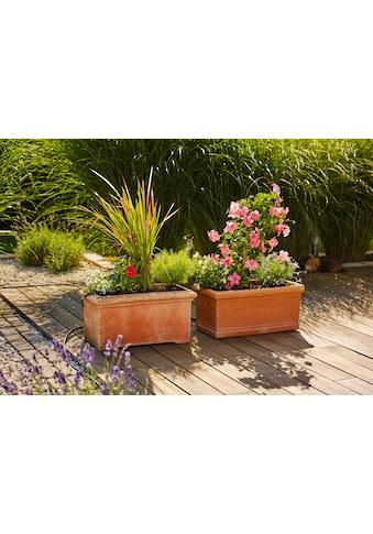 GARDENA Bewässerungssystem »Micro-Drip-System, 13006-20«, Erweiterungsset Pflanztröge kaufen