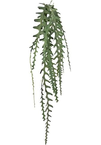 Creativ green Kunstgirlande »Epiphyllumranke« (1 Stück) kaufen
