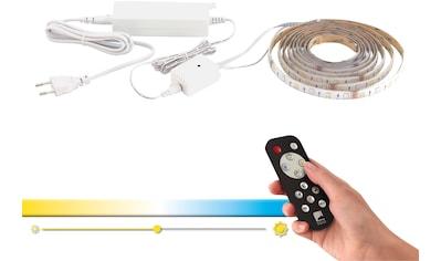 EGLO LED-Streifen »ACCESS«, 1 St.-flammig, CCT kaufen