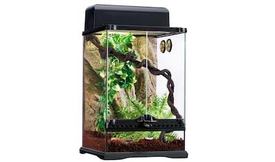 Exo Terra Terrarium »Rainforest«, in versch. Größen kaufen