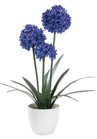 Schneider Kunstblume kaufen