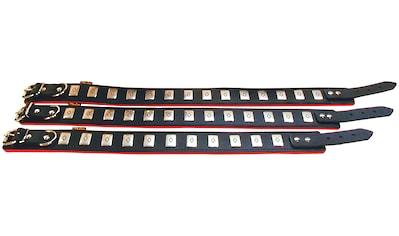 HEIM Hundehalsband »Apollo«, schwarz/rot, Länge: 50 - 65 cm kaufen