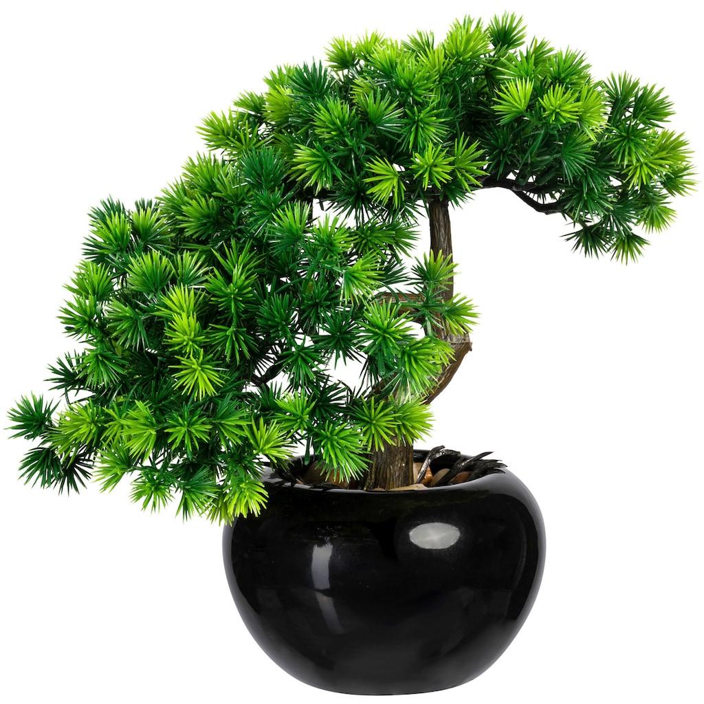 Creativ green Kunstbonsai »Bonsai Lärche« (2 Stück)