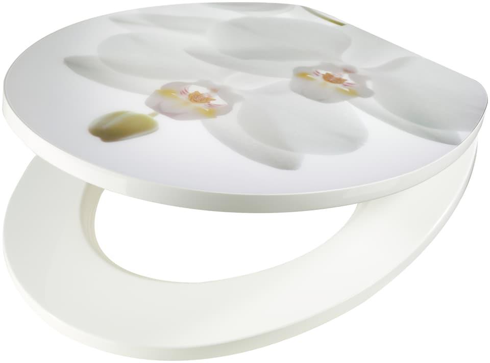 wc sitz orchidee wei mdf toilettensitz mit absenkautomatik auf rechnung kaufen. Black Bedroom Furniture Sets. Home Design Ideas