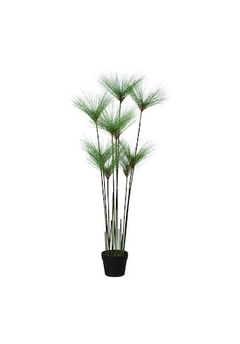 Creativ green Kunstgras kaufen