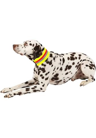 HEIM Hunde - Halsband »Signalhalsband« kaufen