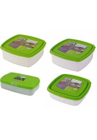 Gies Frischhaltedose »GreenLine«, (Set, 8 tlg.), aus nachwachsenden Rohstoffen kaufen