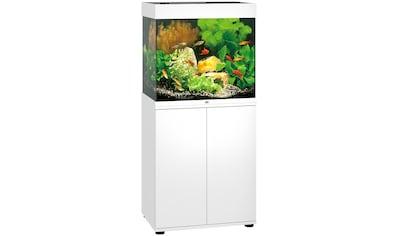 JUWEL AQUARIEN Aquarien-Set »Lido 120 LED«, 120 Liter, Gesamtmaß BxTxH: 61x41x131 cm kaufen