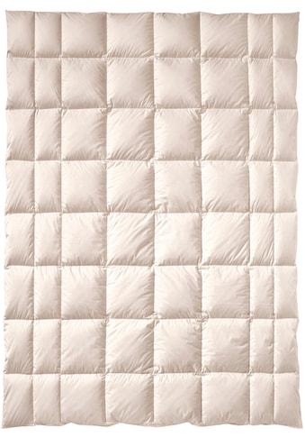 billerbeck Naturfaserbettdecke »ZIRBERELLA® Wool«, normal, Füllung 100% Wolle, Bezug... kaufen