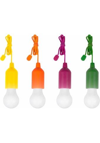 MediaShop,LED Gartenleuchte»HandyLUXcolors«, kaufen