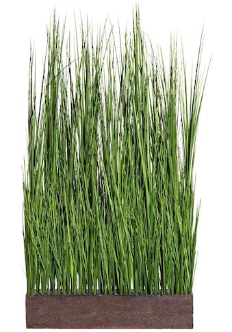 Creativ green Kunstgras »Gras Raumteiler« (1 Stück) kaufen