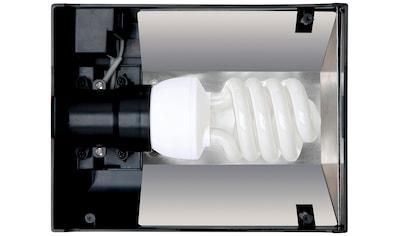 EXO TERRA Terrarium - Abdeckung »Compact Top Nano«, für Terrarienlampen kaufen