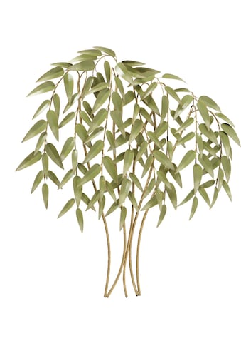 BOLTZE Wanddekoobjekt »Wandobjekt Bamboo« kaufen