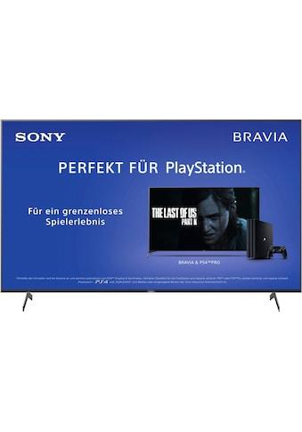 Sony KD49XH8096 Bravia LED - Fernseher (123 cm / (49 Zoll), 4K Ultra HD, Android TV kaufen