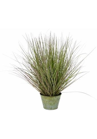I.GE.A. Kunstpflanze »Grasbusch« kaufen