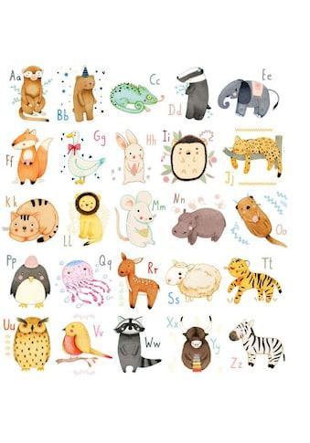 Wall - Art Wandtattoo »Bunte Tierwelt Alphabet« (1 Stück) kaufen