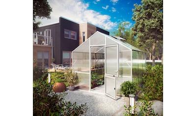 KGT Gewächshaus »Lilie III«, BxTxH: 297x323x268 cm, silber, inkl. Regenrinne kaufen