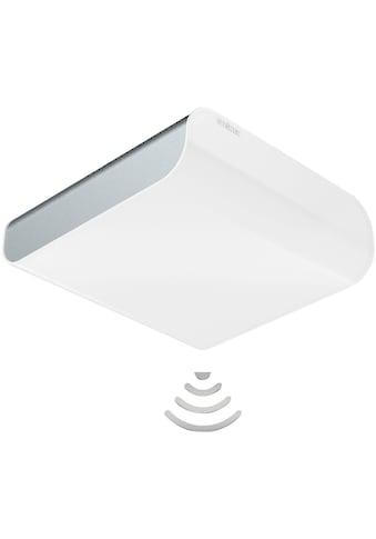STEINEL Innensensorlampe »RS LED M2« kaufen