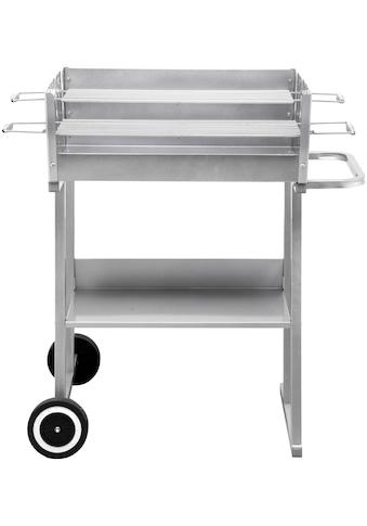 Tepro Holzkohlegrill »Grillwagen Pasadena«, BxTxH: 84x52x90 cm kaufen