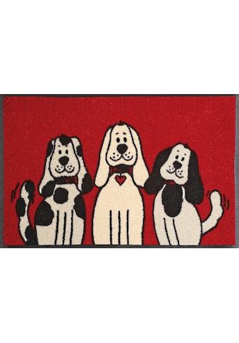 wash+dry by Kleen-Tex Fußmatte »Three Dogs«, rechteckig, 9 mm Höhe, Schmutzfangmatte,... kaufen