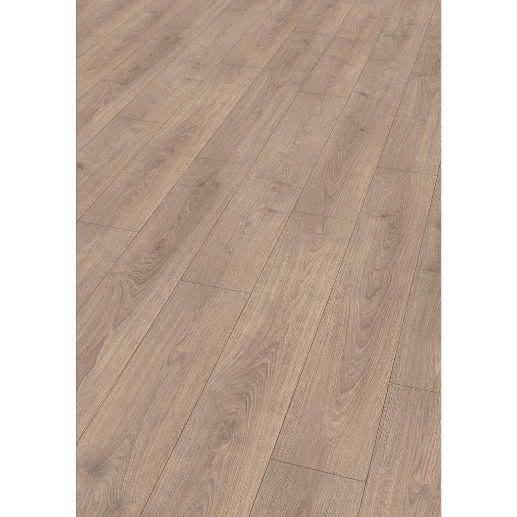 EGGER Laminat »HOME Nord Eiche sandbeige«, ohne Fuge, 1,985 m²/Pkt., Stärke:8 mm