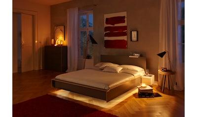 Müller SMALL LIVING,LED Einbauleuchte»FLA 40«, kaufen