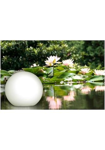BONETTI LED Gartenleuchte »Kugelleuchte«, LED-Board kaufen