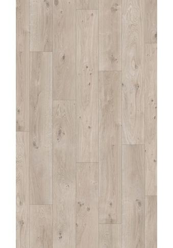 PARADOR Laminat »Basic 400  -  Eiche Natur Grau«, 1285 x 194 mm, Stärke: 8 mm kaufen