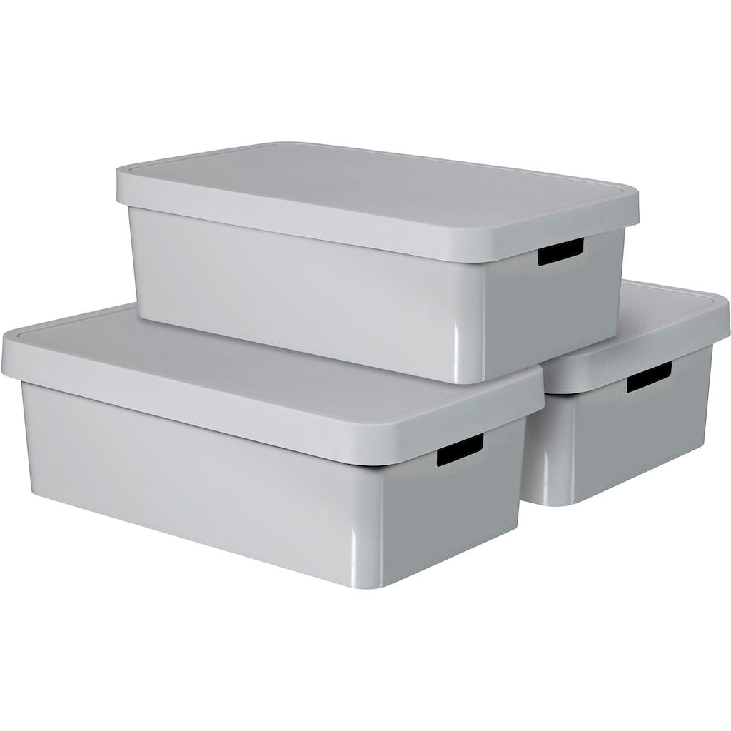 Curver Aufbewahrungsbox »Infinity«, (Set, 3 St.), 30 Liter, grau