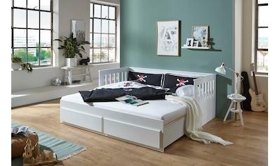 Relita Funktionsbett »Kick« kaufen