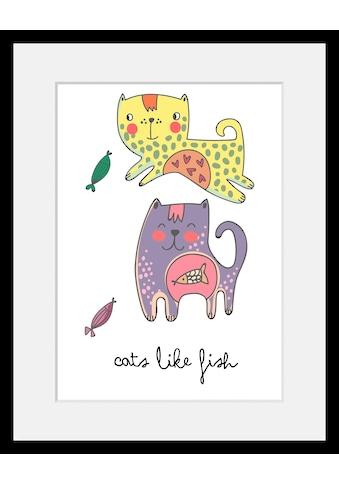Home affaire Bild »Cats like fish«, mit Rahmen kaufen