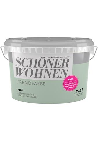 SCHÖNER WOHNEN-Kollektion Wand- und Deckenfarbe »Trendfarbe Spa, matt«, 2,5 l kaufen