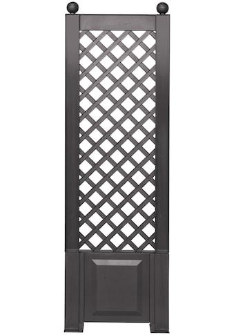 KHW Spalier, BxTxH: 43x6x140 cm, anthrazit kaufen