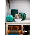 TENDERFLAME Tischfeuer »Tulpe«