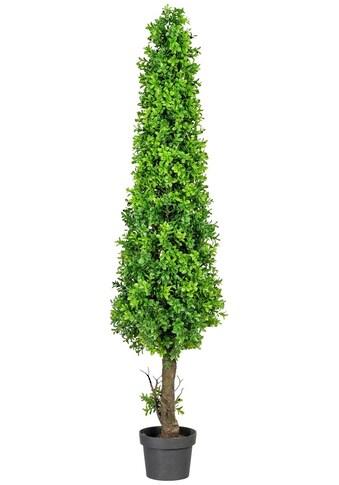 Creativ green Kunstpflanze »Buchsbaumpyramide« (1 Stück) kaufen