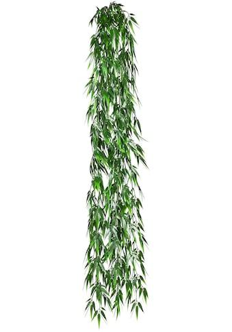Creativ green Kunstranke »Bambushänger« kaufen