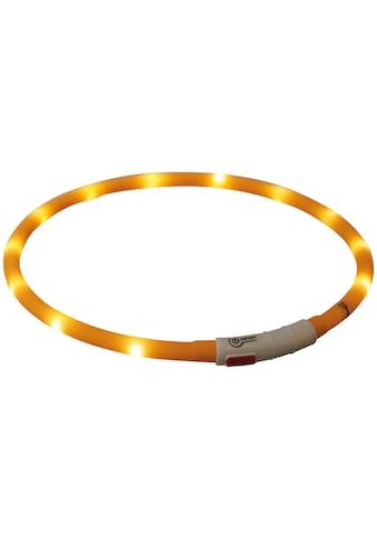 TRIXIE Hunde-Halsband »Flash USB«, Silikon-Kunststoff, 70 cm Länge, kürzbar, in... kaufen