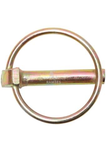 RAMSES Klappstecker , mit Schaft 6 x 42 mm Stahl verzinkt 10 Stück kaufen