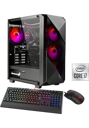 Hyrican Gaming-PC »Striker 6683« kaufen