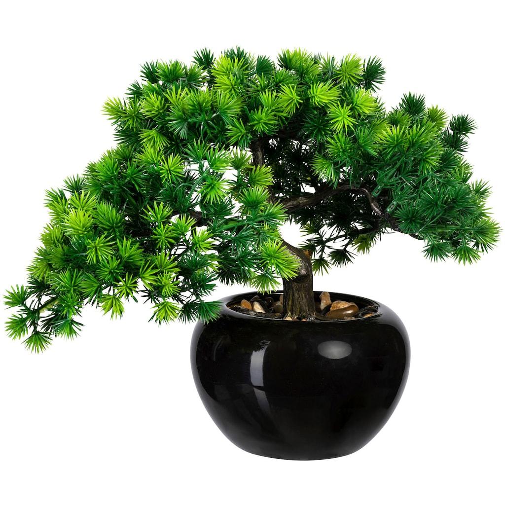 Creativ green Kunstbonsai »Bonsai Lärche« (1 Stück)