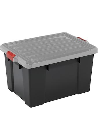IRIS OHYAMA Aufbewahrungsbox »SK210«, (Set, 3 St.) kaufen