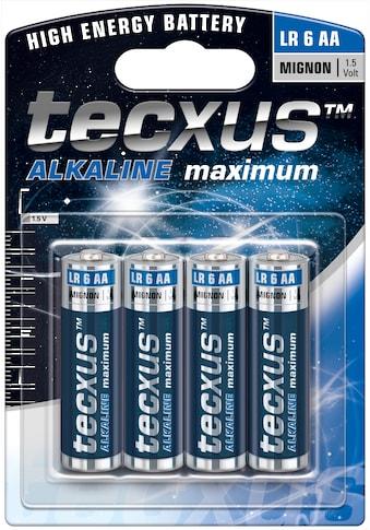 tecxus »mit langer Lebensdauer, 4er Pack« Batterie kaufen