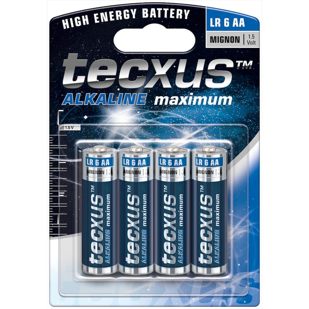 tecxus Batterie »mit langer Lebensdauer, 4er Pack«, (Packung), Mignon (LR6 / AA) Batterien Alkaline 1,5 V